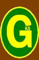 G K SERVICES logo