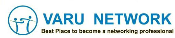 VARU NETWORK Logo
