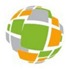 INS Consults Logo