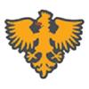 Singh Consultancy Services Logo