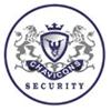 Chavicons INC logo