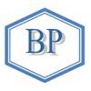 Bridge Placements logo