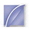 Charter BPO Solutions Pvt Ltd logo