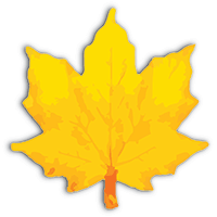Prompt Infotech logo