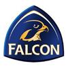 Falcon Management Services Logo