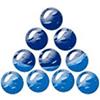 Silver Stone Consultant logo