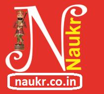 Naukr logo