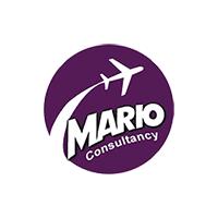 Mario Consultancy Logo