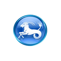 Capricorn Hr Consultancy logo