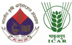 ICAR-Indian Agricultural Research Institute logo