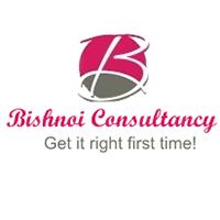Bishnoi Consultancy logo