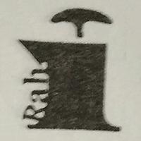 Rahi Information Technology Pvt Ltd logo