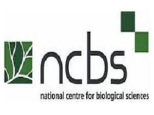 National Centre for Biological Scie... Company Logo