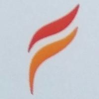 Fenix Management Consultant logo