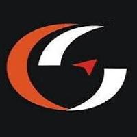 Cegonsoft Private Limited logo