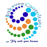Bnksvee Consultant Pvt Ltd logo