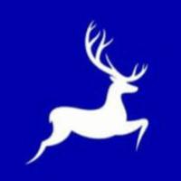 IFAZONE Fashion Company Pvt. Ltd logo