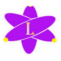 ledaa international logo