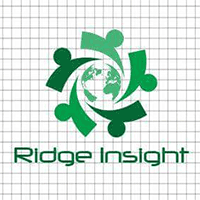 Ridge Insight Technology logo