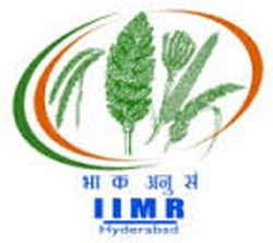 Indian Institute of Millets Researc... Company Logo