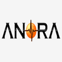 Anora Semiconductor Labs Pvt Ltd logo
