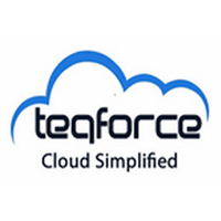 Teqforce Solutions Pvt. Ltd. logo