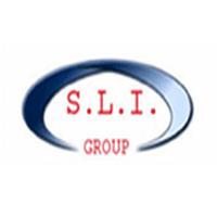 silverliningindia.com logo