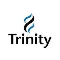 Trinity Infotech Pvt. ltd. logo