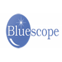 Bluescope Information Technology (P ) Ltd logo
