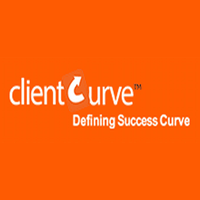 clietcurve infosystems pvt led logo