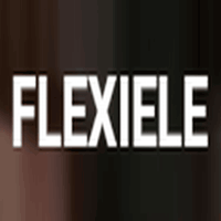 FlexiEle Consulting services logo