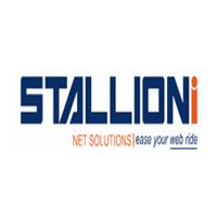 Stallioni net solutions logo