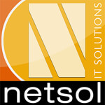 Netsol IT Solutions Pvt. Ltd Company Logo