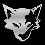 Silver Fox Company Logo