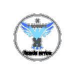 XT SQUARE FINANCIAL SERVICES LTD Company Logo