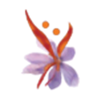 SAFFRON CONSULTANCY SERVICES(SCS) Company Logo