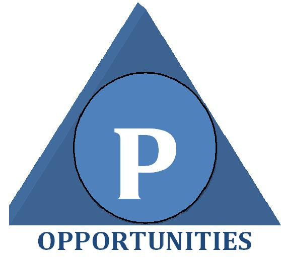 Opportunities Consultant Pvt. Ltd. logo