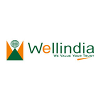Wellindia Securities Ltd logo