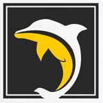 Dolphin placements Company Logo