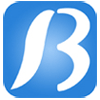 Beracahsoft India Pvt Ltd logo