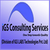 IGSLabs Consulting Services logo