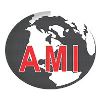 AMI Placement Services Logo