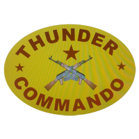 Thunder Commando Security Service Company Logo