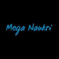 Mega Naukri International services pvt ltd logo