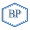 Bridge Placements logo