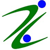 Virzin India Business Services Pvt Ltd logo