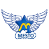 Mesto Manpower Pvt. Ltd. Logo