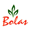 Bolas Intelli Solutions Pvt Ltd logo