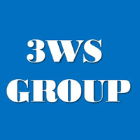 3ws Group logo