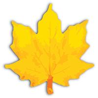 Prompt Infotech Company Logo